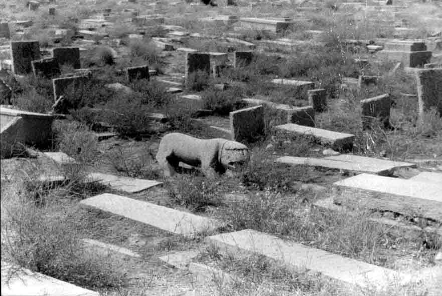 عکس روح در قبرستان